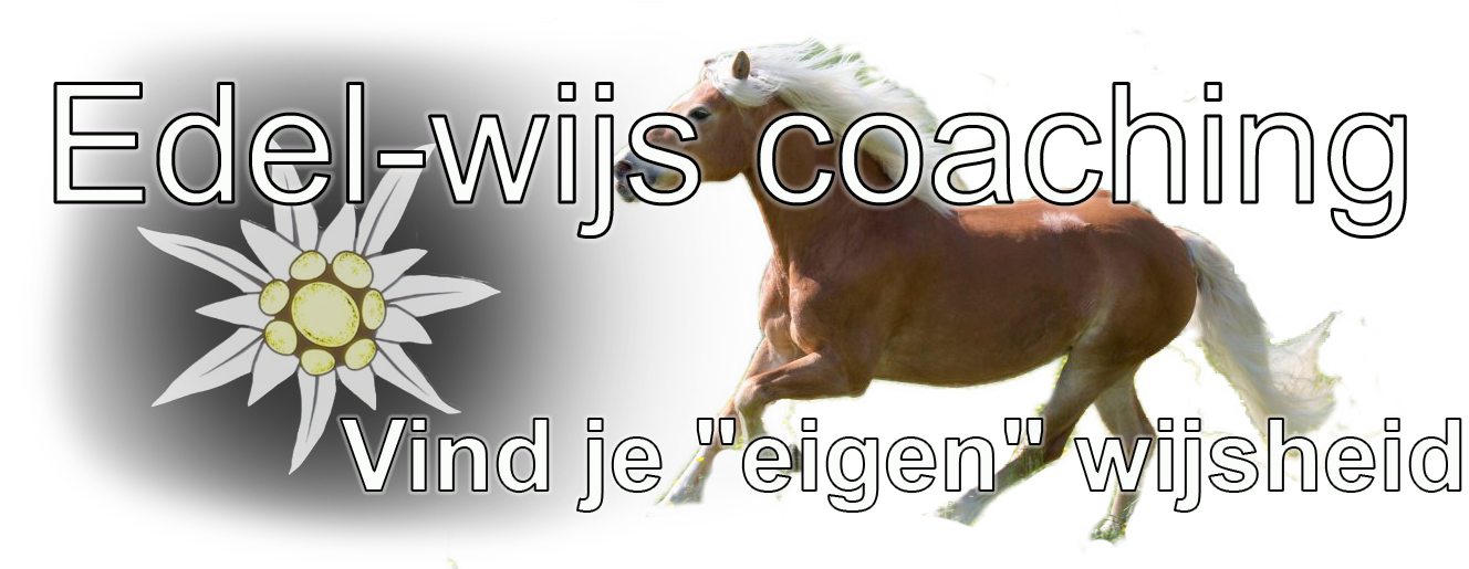Edel-wijs coaching